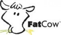 FatCow.com Rating and Web Hosting Review